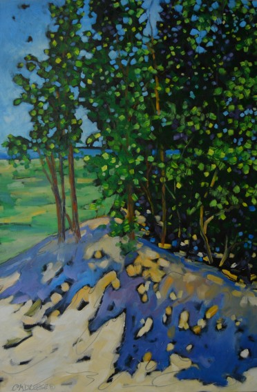 Dreese.Spectacular View from Hamlin Lake Dunes.24x36