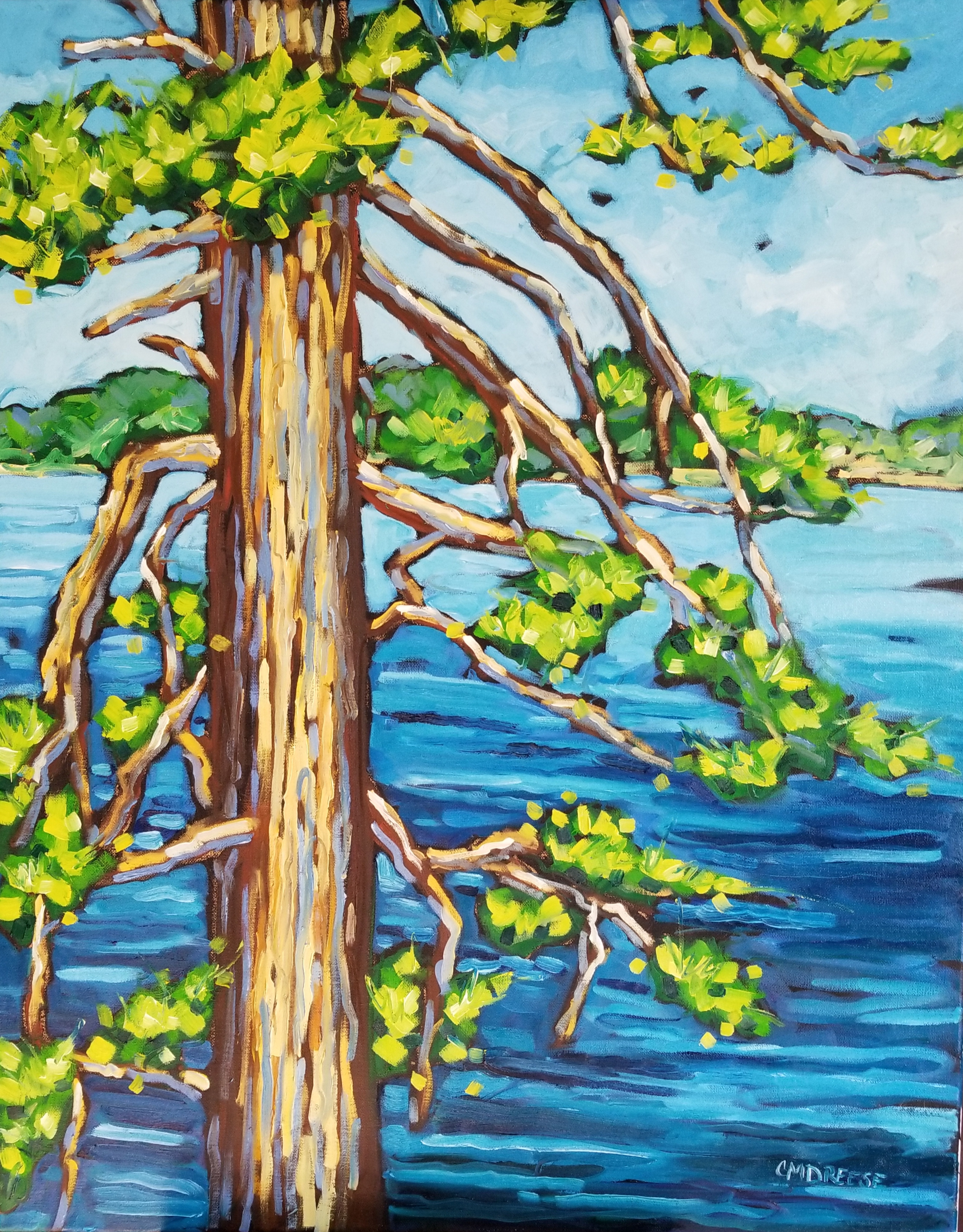 Old Pine Scenic Views 24x30 Christi Dreese Oil Painting